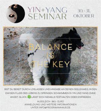 Yin+Yang Seminar @ Programmhaus